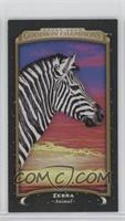 Horizontal - Zebra #/17