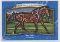 Horizontal - Horse
