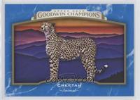 Horizontal - Cheetah