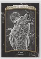 Black & White - Wolf