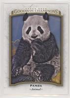 Panda [EXtoNM]
