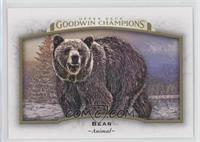 Horizontal - Bear