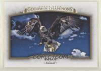 Horizontal - Eagle