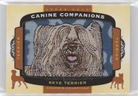 Tier 1 Terrier - Skye Terrier