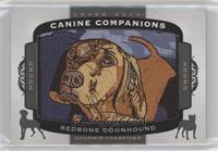 Tier 2 Hound - Redbone Coonhound
