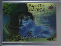 Benito Gallego - Flood the Cities #/25