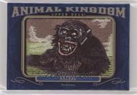 Tier 4 - Bonobo