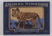 Tier 6 - Tasmanian Tiger