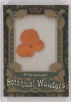 Tier 1 - Orange Hydrangea