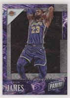 LeBron James #/50