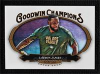 Horizontal - LeBron James