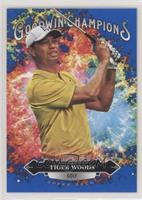 Splash of Color - Tiger Woods