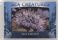 Tier 1 - Sea Urchin [NoneEXtoNM]