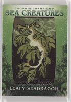 Tier 2 - Leafy Seadragon [NoneEXtoNM]