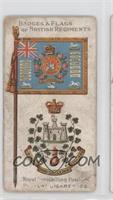Royal Inniskilling Fusiliers [GoodtoVG‑EX]