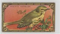 The Prairie Warbler