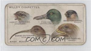 1922 Wills Do You Know - Tobacco [Base] #7 - Birds' Beaks [Poor to Fair]