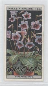 1925 Wills Flower Culture in Pots - Tobacco [Base] #47 - Streptocarpus