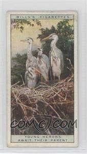 1925 Wills Life in the Tree Tops - Tobacco [Base] #17 - Young Herons Await Their Parent [GoodtoVG‑EX]