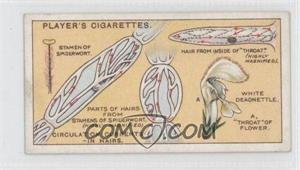 1929 Player's Hidden Beauties - Tobacco [Base] #6 - Circulation Currents-in Hairs. [Good to VG‑EX]