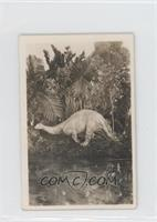 Brontosaurus Excelsus [GoodtoVG‑EX]