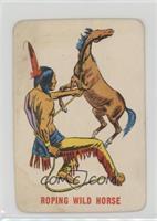 Roping Wild Horse [GoodtoVG‑EX]