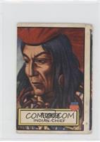 Tecumseh [Poor]