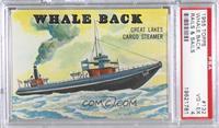 Whale Back [PSA4VG‑EX]