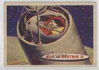 Dog in Sputnik II [PoortoFair]