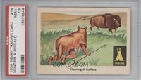 Hunting a Buffalo [PSA7.5]