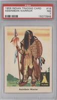 Assiniboin Warrior [PSA7]