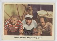 Where has that doggone dog gone? [Poor to Fair]