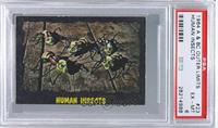 Human Insects [PSA 6]