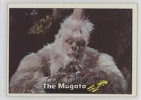 The Mugato [GoodtoVG‑EX]