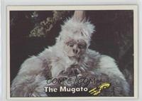 The Mugato