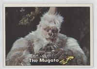 The Mugato