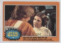 Luke and Leia Shortly Before the Raid