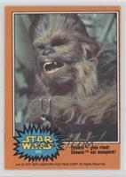 Chewie Gets Riled! [PoortoFair]