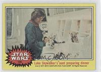 Luke Skywalker's Aunt Preparing Dinner