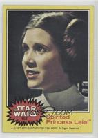 Spirited Princess Leia! [PoortoFair]