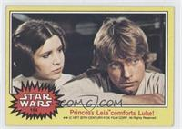 Princess Leia comforts Luke!