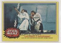Leia blasts a stormtrooper [NoneEXtoNM]