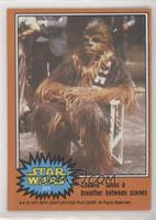 Chewie Takes a Breather Between Scenes