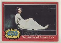 The Imprisioned Princess Leia [PoortoFair]