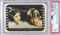 Luke and Leia [PSA7NM]