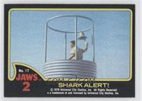 Shark Alert!