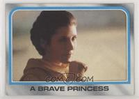 A Brave Princess