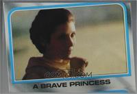 A Brave Princess [Misprint]