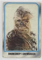 Snowswept Chewbacca [Poor]