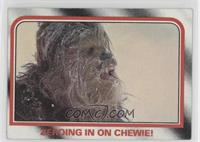Zeroing in on Chewie!